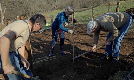 À Besançon, un « laboratoire d'écologie intégrale »